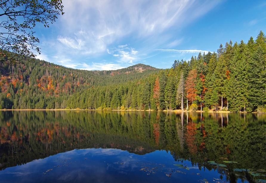 Predigtstuhl Resort in St. Englmar im Bayerischen Wald