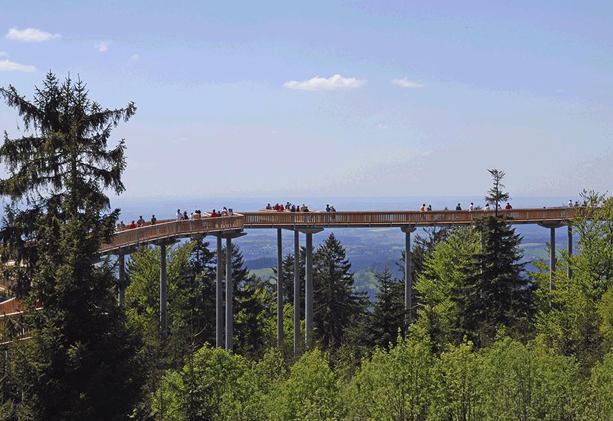 Predigtstuhl Resort in St. Englmar im Bayerischen Wald, Waldwipfelpfad