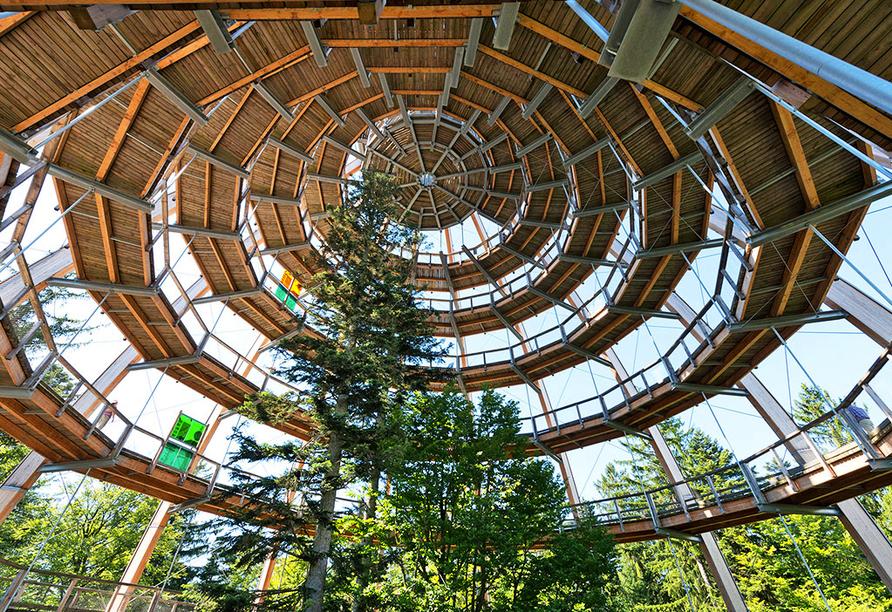 Ferienpark Geyersberg in Freyung, Ausflugsziel Baumwipfelpfad