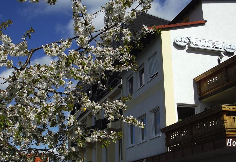 Hotel Zum Weissen Lamm in Rothenberg-Kortelshütte im Odenwald, Außenansicht