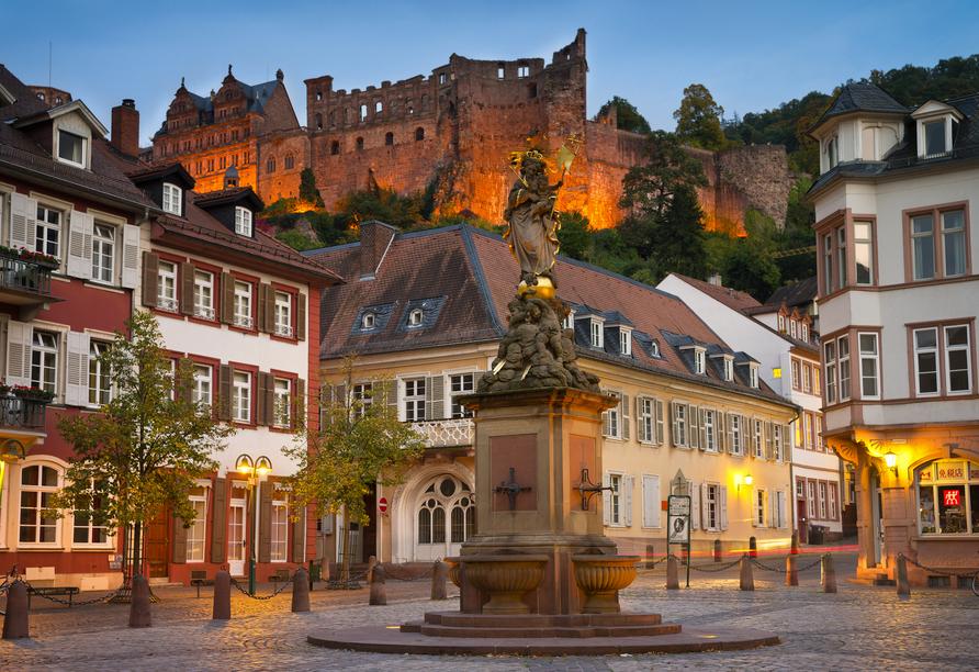Hotel Zum Weissen Lammin Rothenberg-Kortelshütte im Odenwald, , Marktplatz in Heidelberg