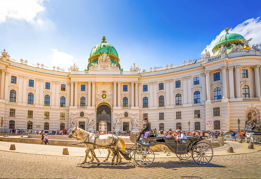 MS Amelia, Wien