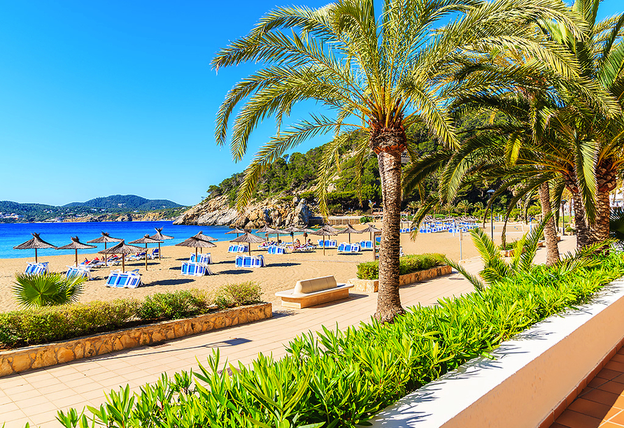 Hotel Abrat in San Antonio in Ibiza, Ibiza
