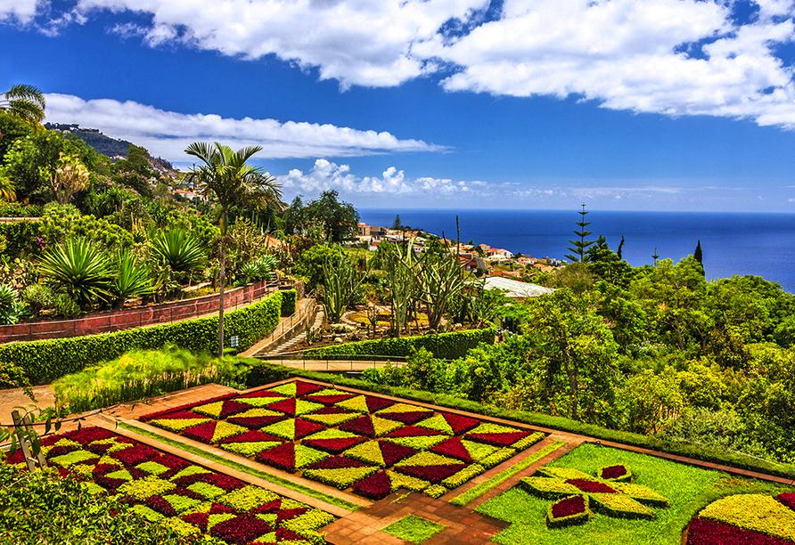 Hotel Estrelícia in Funchal, Botanischer Garten