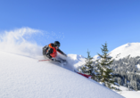 Hotel Winterberg Resort, Ski