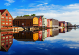 Costa Fascinosa, Trondheim