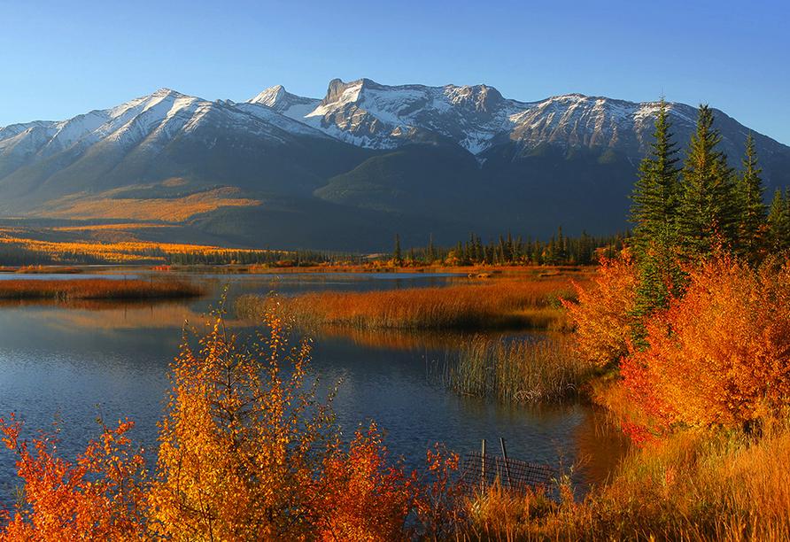 West-Kanada-Reise, Tallbot Lake im Jasper Nationalpark