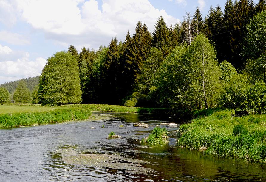 Landhotel am Sonnenhang in Pleystein, Oberpfälzer Wald