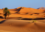 Marokkos Zauber erleben, Merzouga Sanddünen