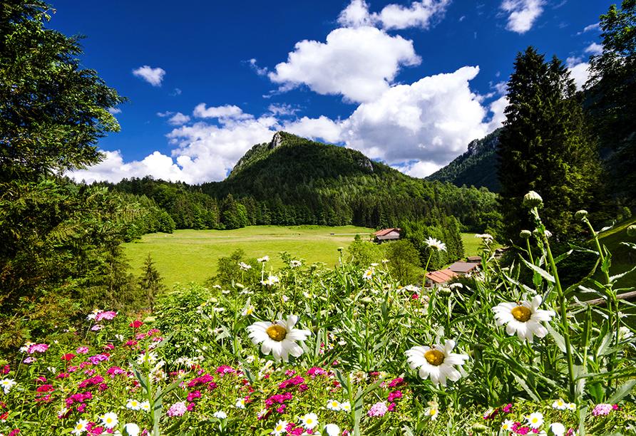 Wellness & Sporthotel Bayerischer Hof in Rimbach, Bayerischer Wald