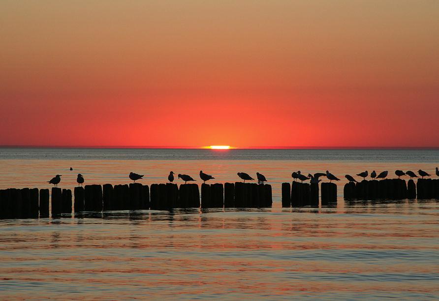 Diune Resort Kolberg, Sonnenuntergang