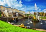 Costa Fascinosa, St. Petersburg