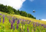 Best Western AHORN Hotel Oberwiesenthal, Sessellift Fichtelberg