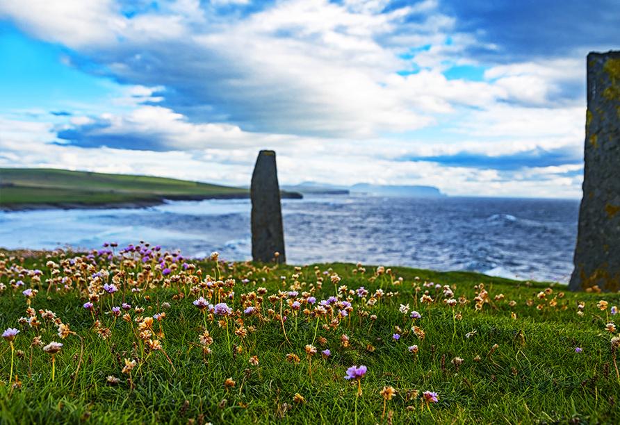 MSC Preziosa, Orkney Inseln