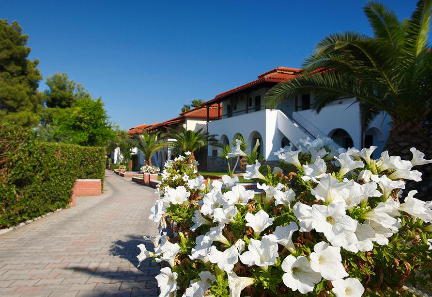 Hotel Blue Dolphin, Chalkidiki, Hotelanlage