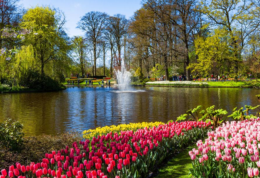 Amsterdam und Keukenhof, Keukenhof