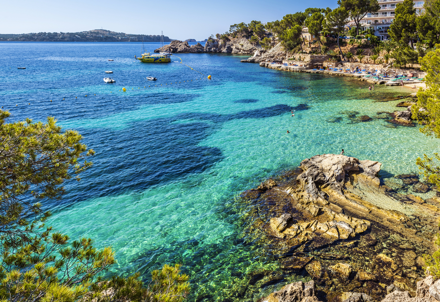 MSC Grandiosa, Bucht Palma de Mallorca