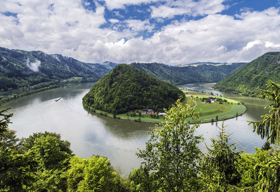 Donauradreise, Schlögener Schlinge