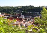 Landhotel Alter Peter in Kipfenberg im Altmühltal, Eichstätt