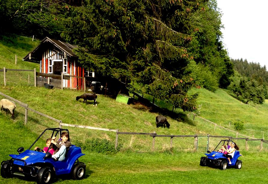 AllgäuHotel Hofgut Kürnach in Wiggensbach im Allgäu, GoKart