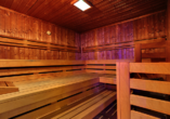 Active & Wellness Hotel Subterra in Ostrov, Sauna