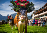 Hotel Gradlwirt in Niederndorf, Tirol, Österreich, Almabtrieb