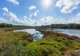 Hotel Playa Azul, Cala'n Porter, Menorca, Naturpark s'Albufera des Grau