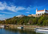DCS Amethyst, Bratislava
