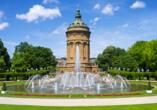DCS Alemannia, Mannheim