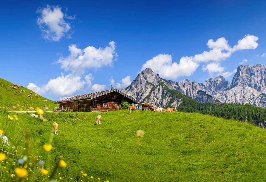 Parkhotel Kirchberg in Kirchberg in Tirol, Almhütten