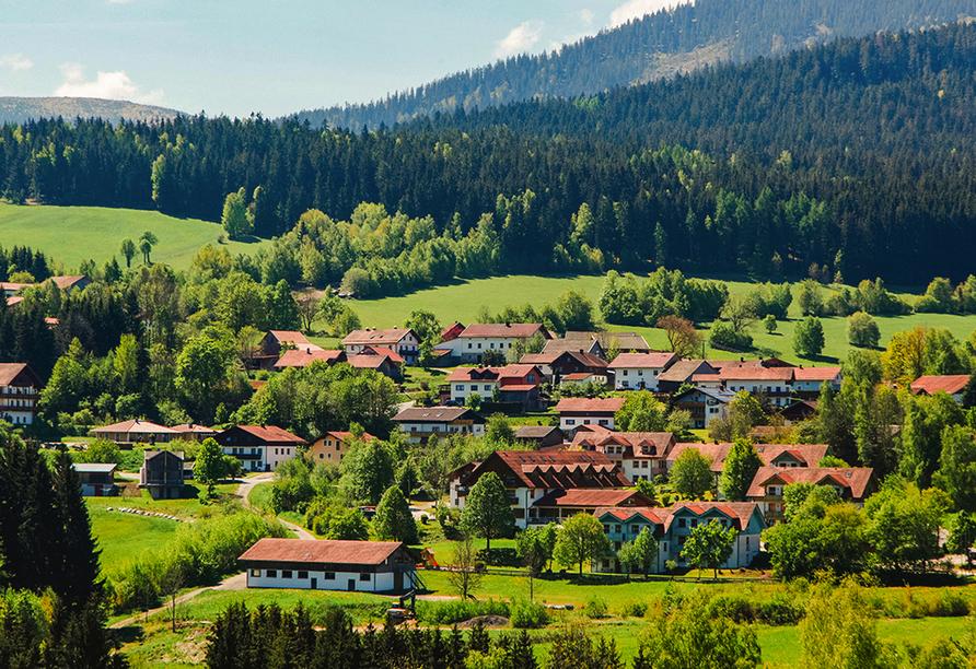 Panoramahotel Schwarzeck in Lohberg, Lohberg