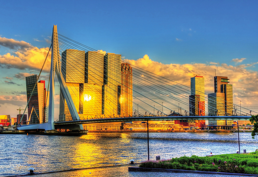 MS Andrea, Rotterdam
