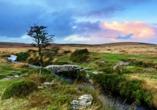 Im Nationalpark Dartmoor offenbart sich Ihnen eine einzigartige Landschaft.