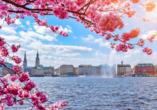 Super 8 by Wyndham Hamburg Mitte, Hamburg im Frühling mit Kirschblüten