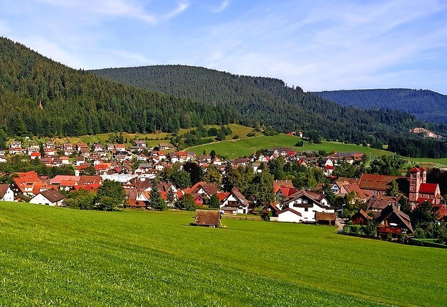 Baiersbronn bietet eine einmalige Kulturlandschaft.
