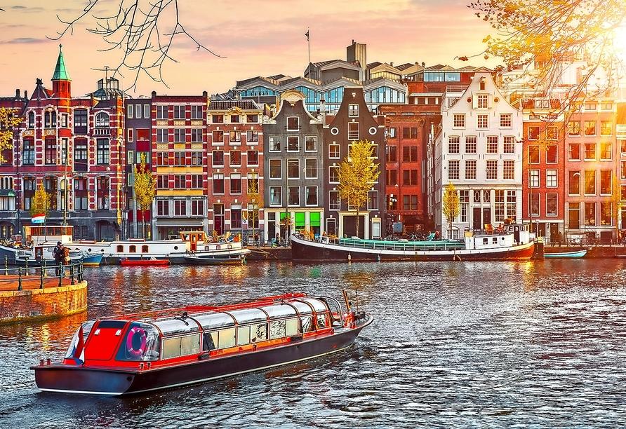 MS Alena, Amsterdam