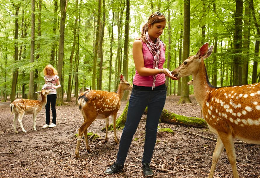 Erleben Sie eine Wildtierfütterung im Erlebnispark Tripsdrill.