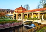 Das Dorint Resort & Spa Bad Brückenau begrüßt Sie mit einem wunderschönen Schlosspark.