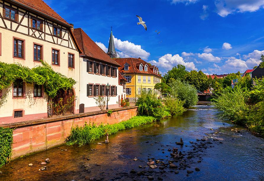 Das idyllische Städtchen Ettlingen im Schwarzwald begrüßt Sie zu Ihrem Urlaub!