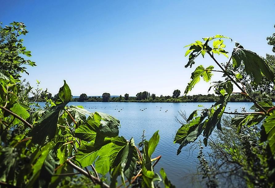 Auch der schöne Altmühlsee ist einen Besuch wert.