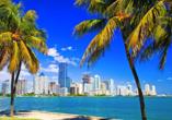 Busrundreise Florida, Miami