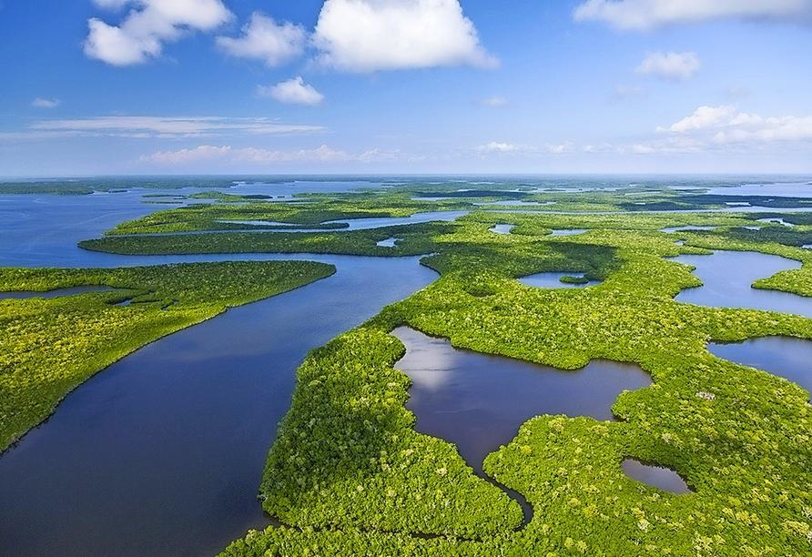 Busrundreise Florida, Everglades Nationalpark