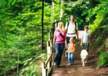 Im Pfälzer Wald lassen sich tolle Wanderungen und Radtouren unternehmen.