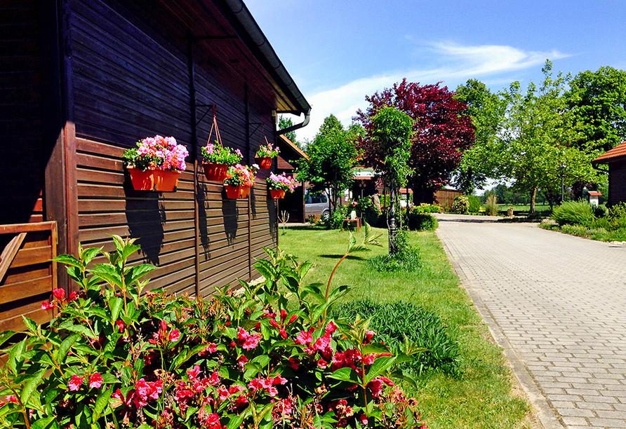 Bungalow mit Wiese und Blumen drumherum, rechts ein gepflasteter Weg.