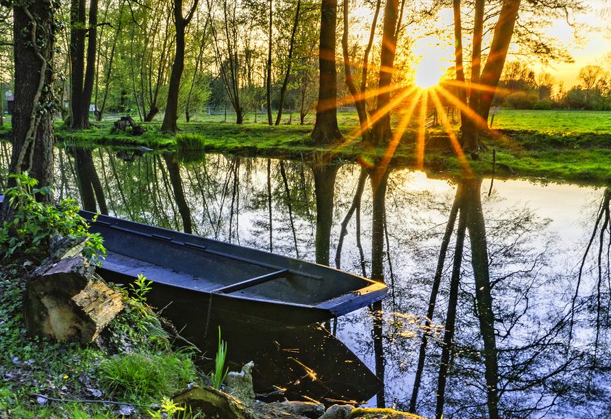 Kleines Boot am Ufer eines Spreewaldkanals mit Sonne im Hintergrund.