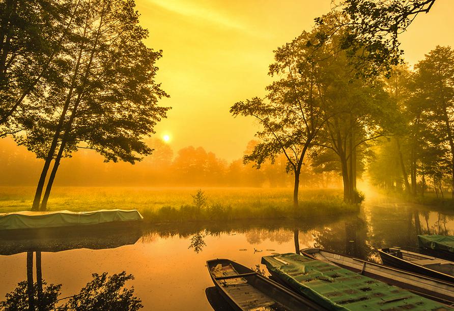 Sonneaufgang in warmen Farben über Spreewaldkanal.