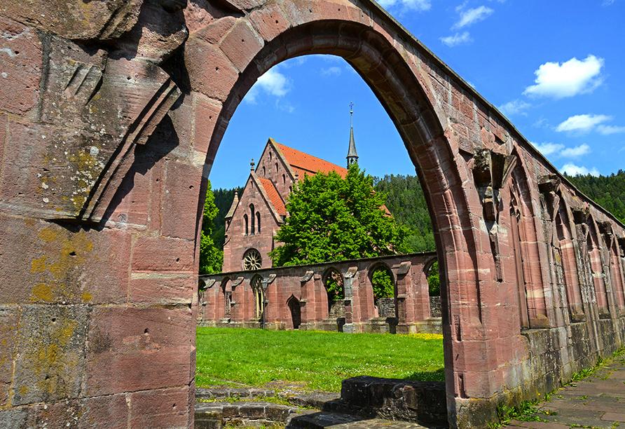 Das historische Kloster Hirsau liegt in Calw im Nahgoldtal zwischen dicht bewaldeten Schwarzwald-Höhen.