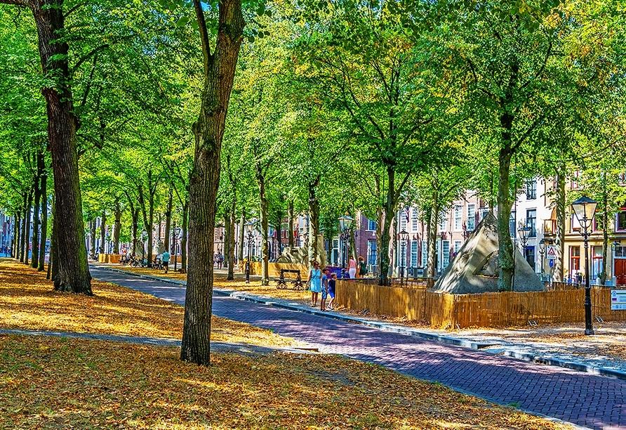 Der Platz Lange Voorhout in Den Haag gilt als der schönste Platz der Stadt – vielleicht sogar ganz Hollands.