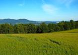 Hotel Ferien vom Ich in Neukirchen im Bayerischen Wald, Hallenbad