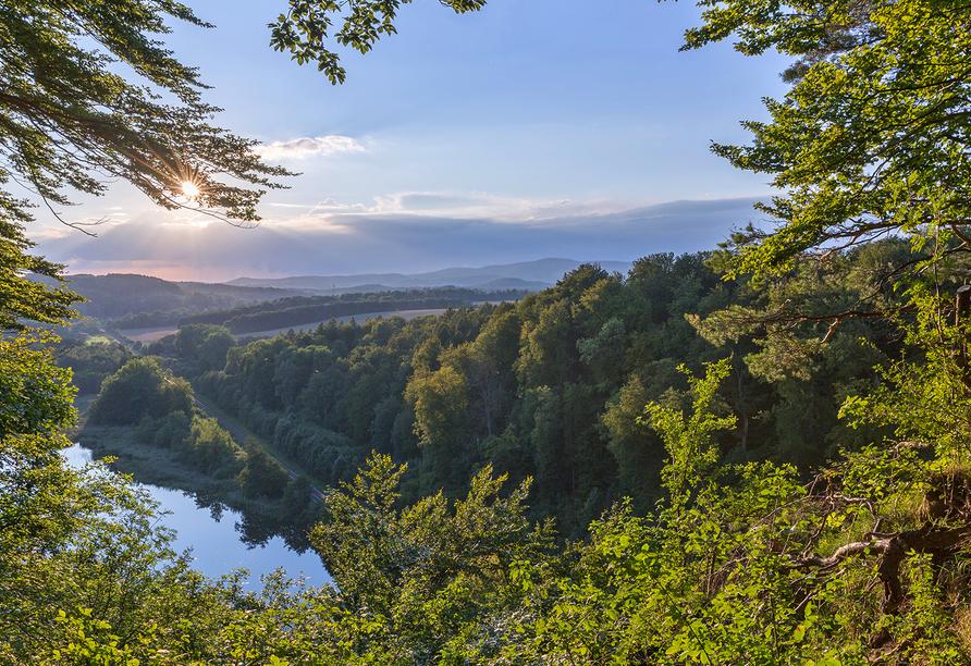 Ausblick auf den wunderschönen Natur- und Nationalpark Harz.